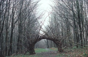 Andy Goldsworthy Woven Sticks